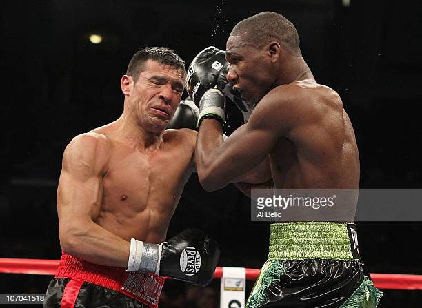 Sergio Martinez and Paul Williams exchange punches during their Middleweight Championship fight on November 20 2010 at The Boardwalk Hall in Atlantic...