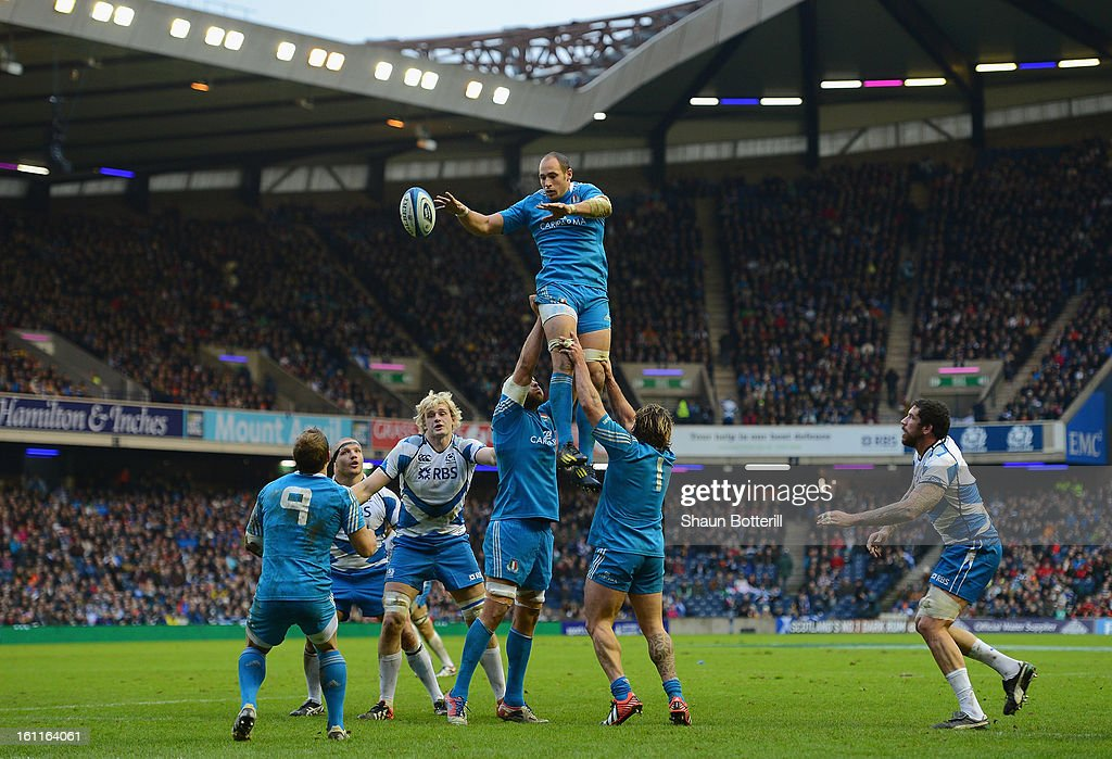 <a gi-track='captionPersonalityLinkClicked' href=/galleries/search?phrase=Sergio+Parisse&family=editorial&specificpeople=648570 ng-click='$event.stopPropagation()'>Sergio Parisse</a> of Italy wins the line-out during the RBS Six Nations match between Scotland and Italy at Murrayfield Stadium on February 9, 2013 in Edinburgh, Scotland.