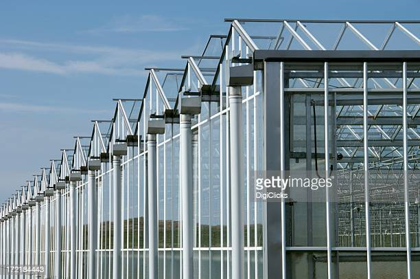 Series of industrial greenhouses