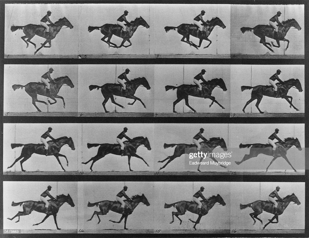 A series of photographs showing a horse galloping. This series of action studies of a horse galloping established that horses do, at one point in this pace, have all four feet off the ground as proven by Eadweard Muybridge (1830 - 1904), English born American photographer and inventor. Original Artwork: From 'Animal Locomotion', volume 9 - pub. 1887.