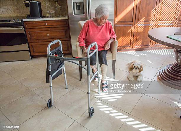 Series:Senior woman sitting in kitchen in sunlight with dog