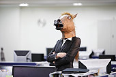 Serious Businesshorse