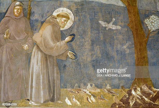 Sermon to the Birds fresco detail Saint Francis cycle by Giotto Upper Basilica of St Francis Assisi Umbria Italy