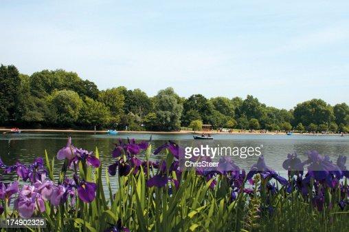 Serpentine Lake in Hyde Park London