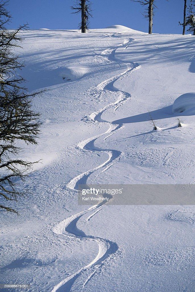 Serpentine ski tracks, North Cascades, Washington, USA, elevated view