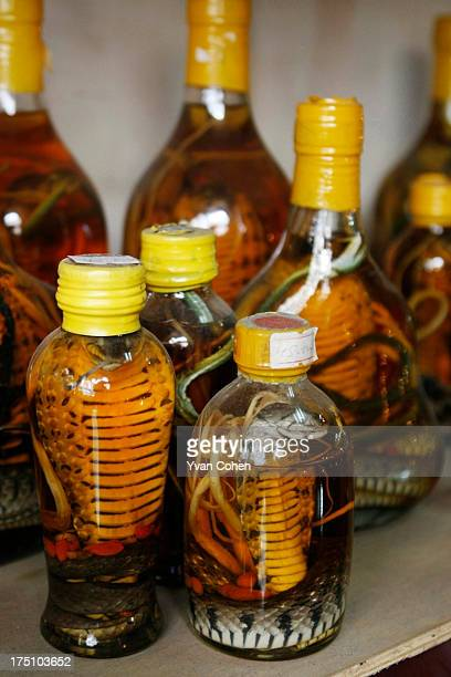 Serpents and other venomous insects pickled in alcohol are sold as souvenirs to tourists in Hanoi The Vietnamese pickle venomous snakes and scorpions...