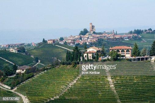 Serralunga d'Alba, Langhe, Cuneo, Piemonte, Italy