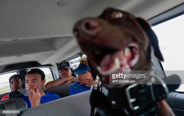 Service Dog Axe is seen inside a van with a youth group at the Arthur R Marshall Loxahatchee National Wildlife Refugee in Boynton Beach Florida on...