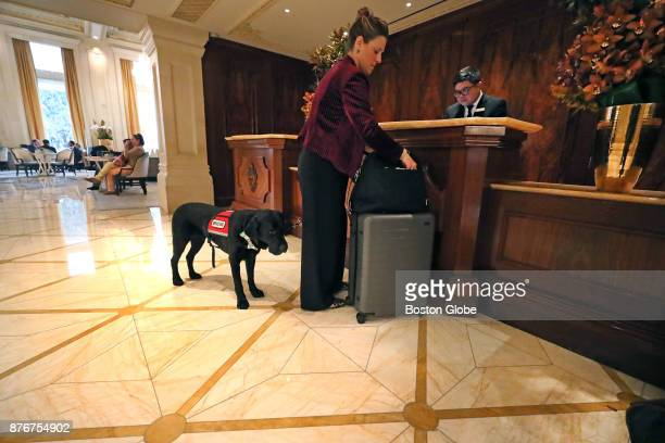 Service dog Rescue and his owner Jessica Kensky check out of the Plaza Hotel in New York City on Nov 16 2017 Rescue the service dog belonging to...