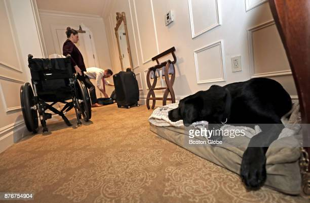 Service dog Rescue rests in his bed at his Plaza Hotel room as his owners Jessica Kensky and Patrick Downes get ready to attend the awards ceremony...