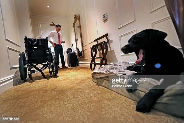 Service dog Rescue yawns in his Plaza Hotel room in New York City on Nov 16 2017 Rescue the service dog belonging to Boston Marathon bombing...
