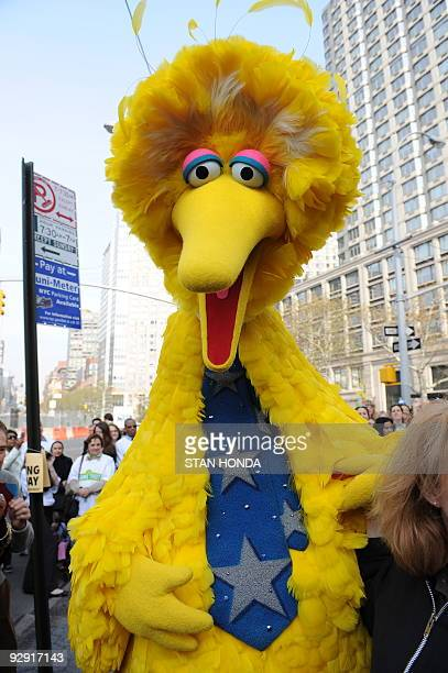 Sesame Street's Big Bird charactor November 9 2009 at West 64th Street and Broadway in New York on the eve of the 40th anniversary of the broadcast...