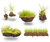 set green grass with earth isolated on white background