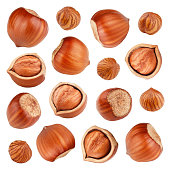 Set of hazelnuts isolated on white background as package design elements