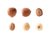 Set of hazelnuts with clipping path