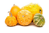 set of small tiny pumpkins isolated on white background