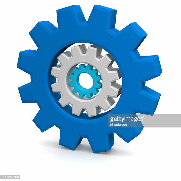 Set of toothed gear wheels