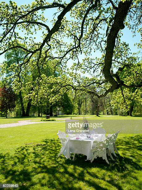A set table under a tree Sweden.