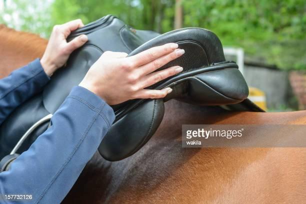setting the saddle - Pferd satteln