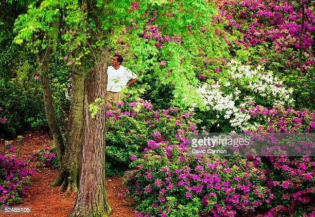Seve Ballesteros of Spain takes a 7 on the 13th hole during the third round of the Masters held at The Augusta National Golf Club on April 11 1992 in...