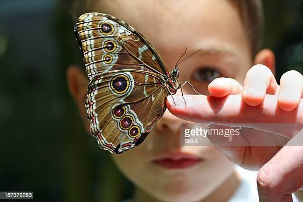 Sieben Jahre alten Jungen/Kind mit Schmetterling auf finger