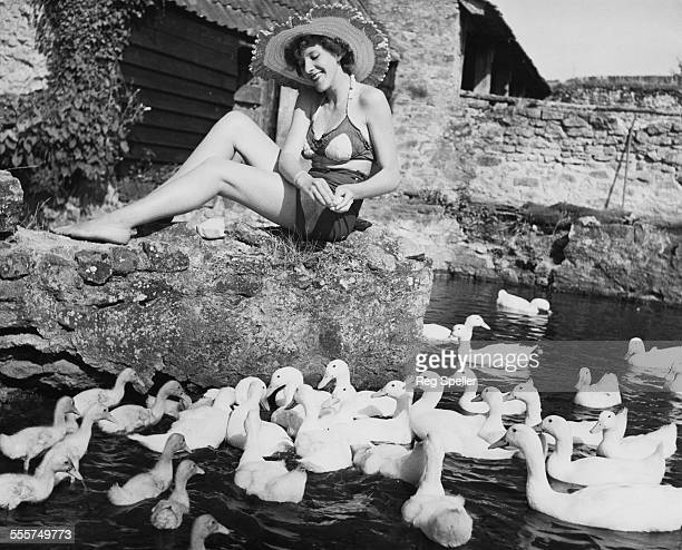 Seventeen yearold Ann Speller of Catford feeding ducks during a holiday on a farm at St Audrey's in Somerset 12th August 1950