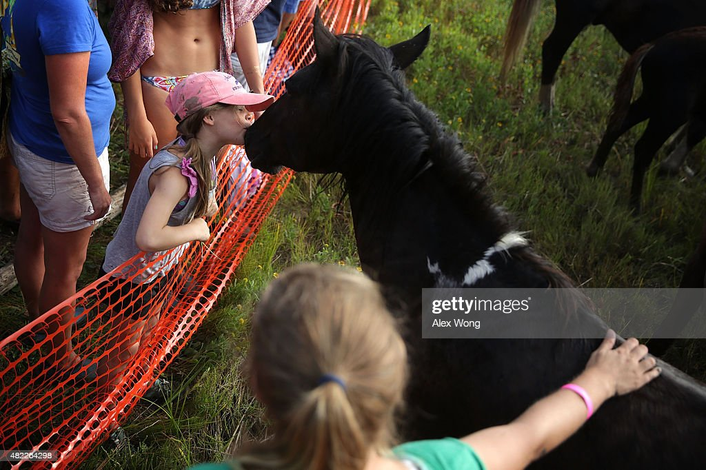 Sevenyearold Carlin Makibbin of Ocean City Maryland kisses a wild pony after ponies swam across the Assateague Channel during the annual pony swim...