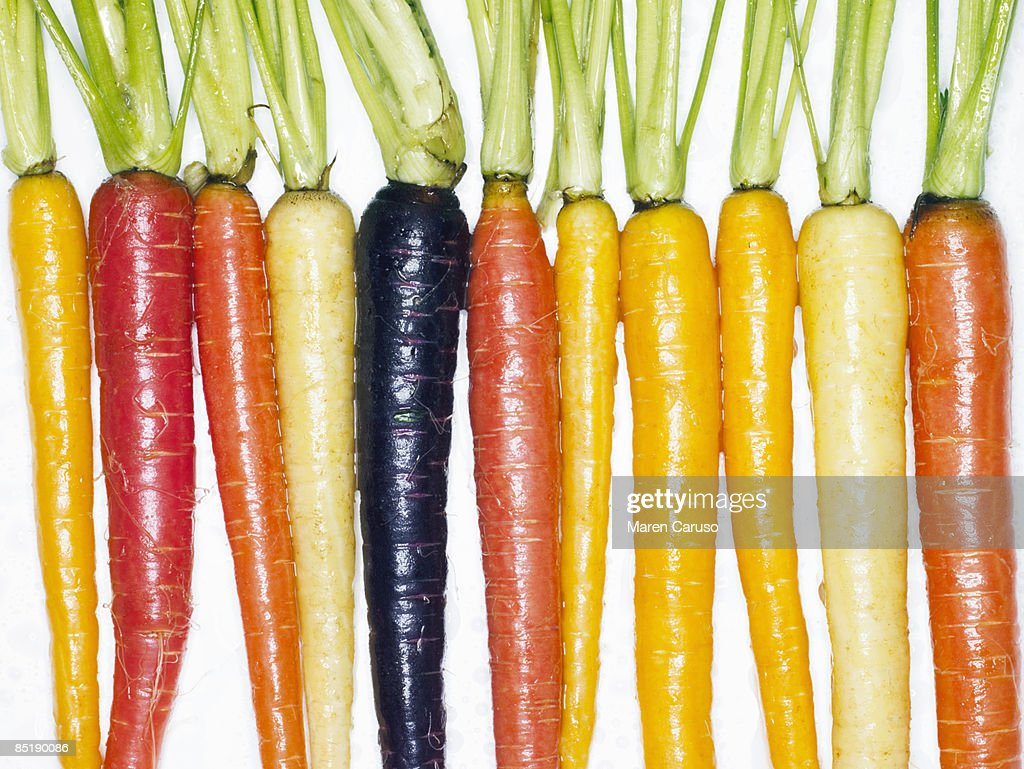 Several different colored whole carrots, top view. : Stock Photo