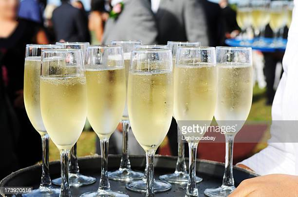 Several glasses full of champagne on a tray