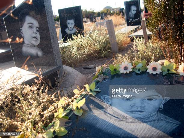 Several tomb of children are seen one next to the other with flowers decoration on it The Children cemetery which is a part of the main Vadierahmat...