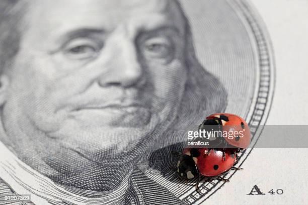 sex & money 2