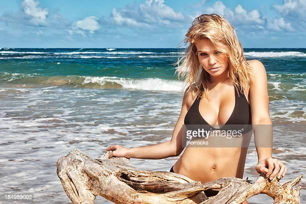 Sexy Young Woman in Black Bikini Posing with Driftwood