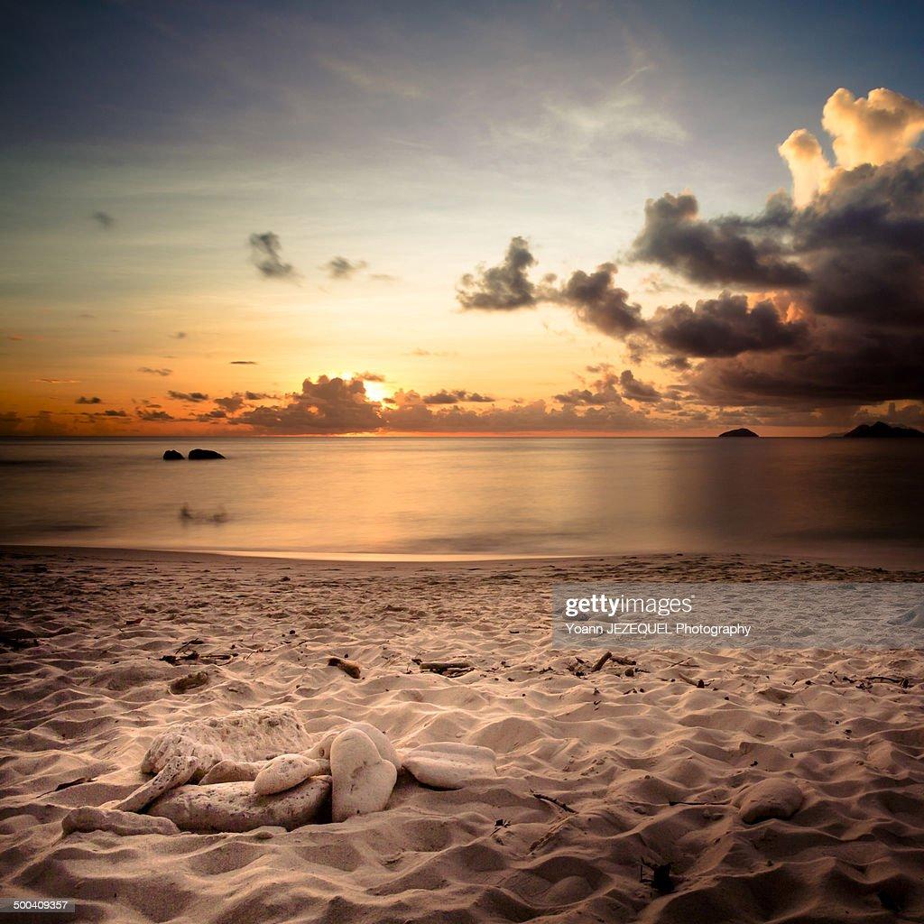 Seychelles beach : Photo
