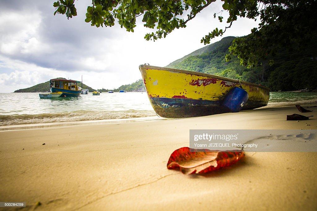 Seychelles : Photo