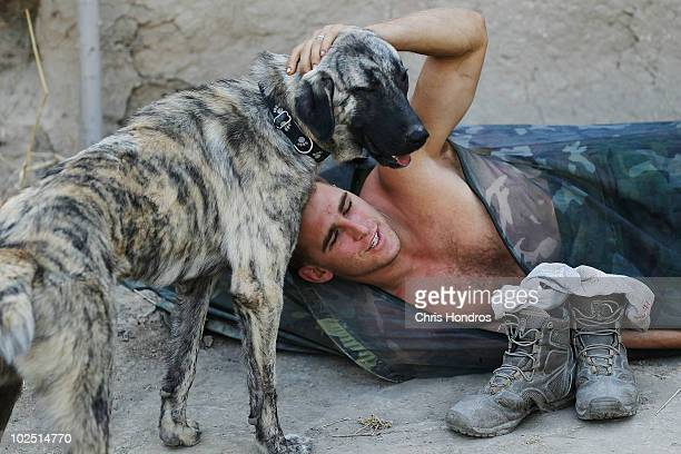 Sgt John Barton of the 4th Brigade of the US Army's 82nd Airborne Division pets his platoon's pet dog RayRay as he awakens from sleeping outside at...