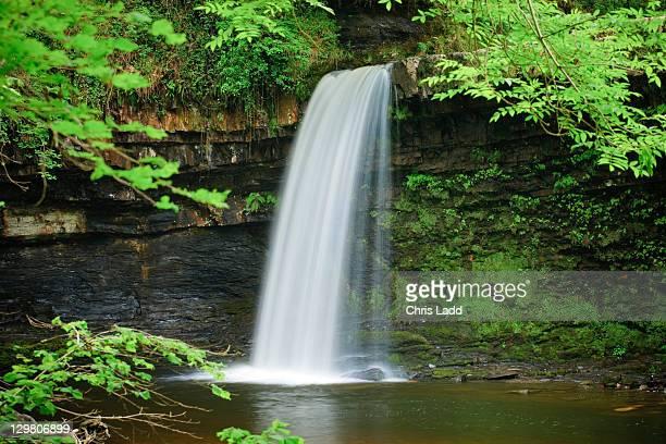 Sgwd Gwladys or Lady falls Afon Pyrddin, Brecon Beacons, Brecon Beacons National Park, Powys, Wales