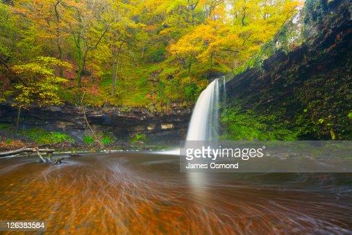 Sgwd Gwladys waterfall near Pontneddfechan. Brecon Beacons National Park. Powys. Wales. UK.