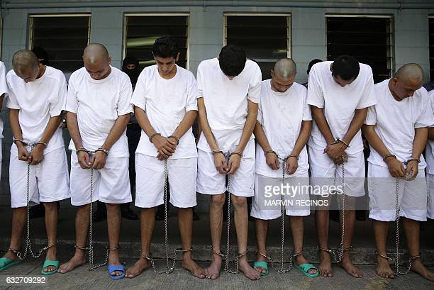 TOPSHOT Shackled gang members stand in a line upon their arrival at a maximum security prison in Zacatecoluca 65 km east of San Salvador on January...