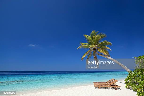 Blautöne und tropische Insel