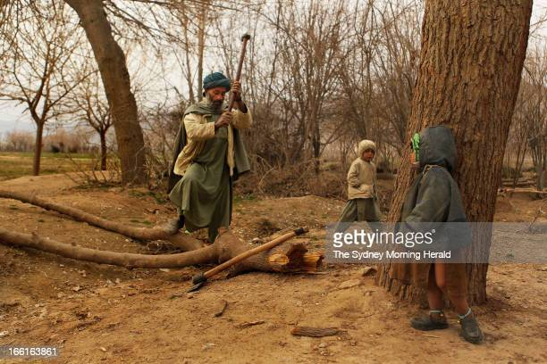 Shadi chops wood with his sons Khatai and Wari in Sakhar village in the Charchino district of Uruzgan province Afghanistan January 26 2013