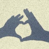 Shadow Heart
