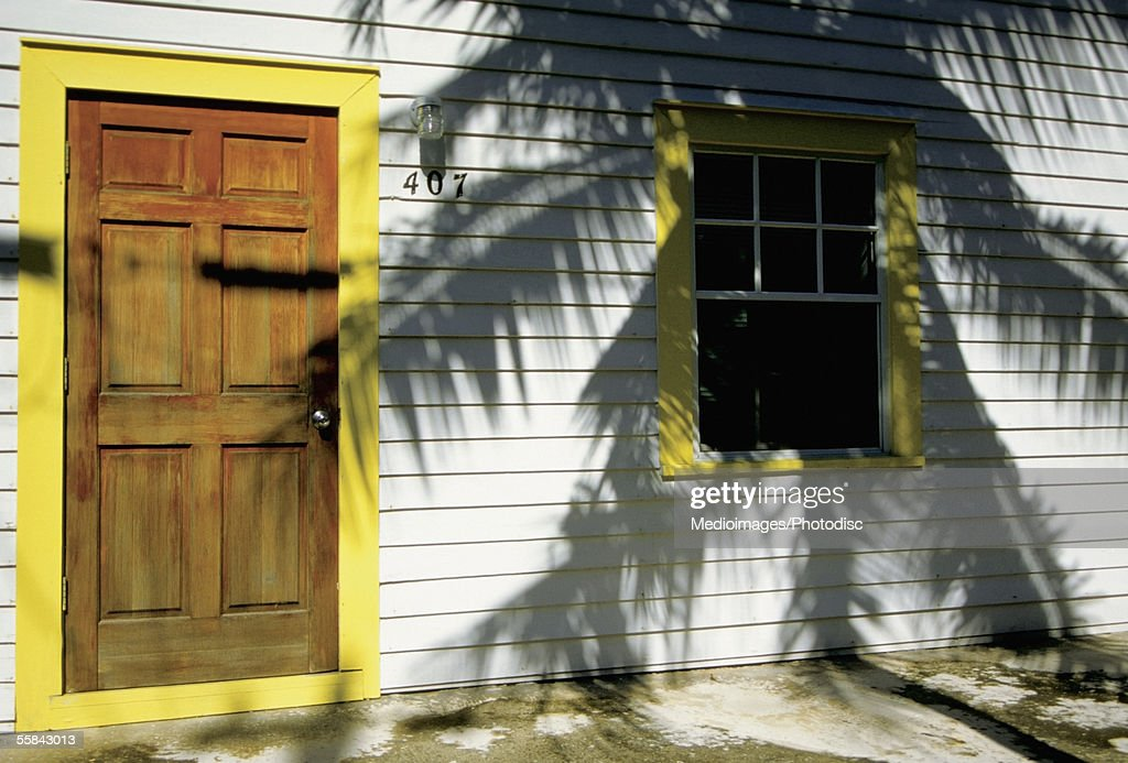 Shadow of a palm tree on a house wall, Florida, USA : Stock Photo