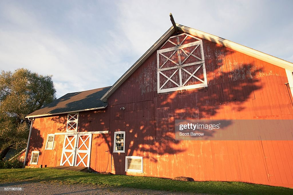 Shadow of a tree on a barn : Stockfoto