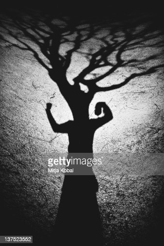 Shadow of man against tree in dark on ground : Stock Photo