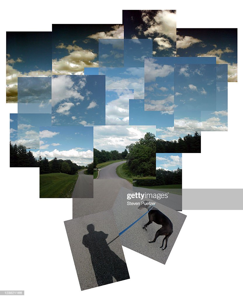 Shadow of man walking dog : Stock Photo