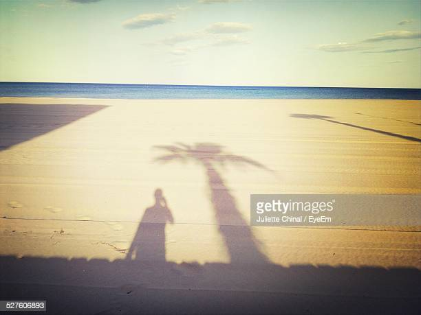 Shadow Of Man With Palm Tree On Beach