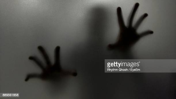 Shadow Of Person On Frosted Glass