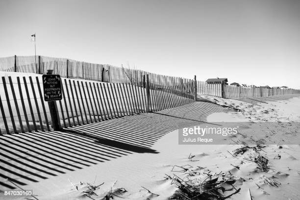 Shadows by a fence on a beach