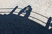 Shadows of affectionate couple