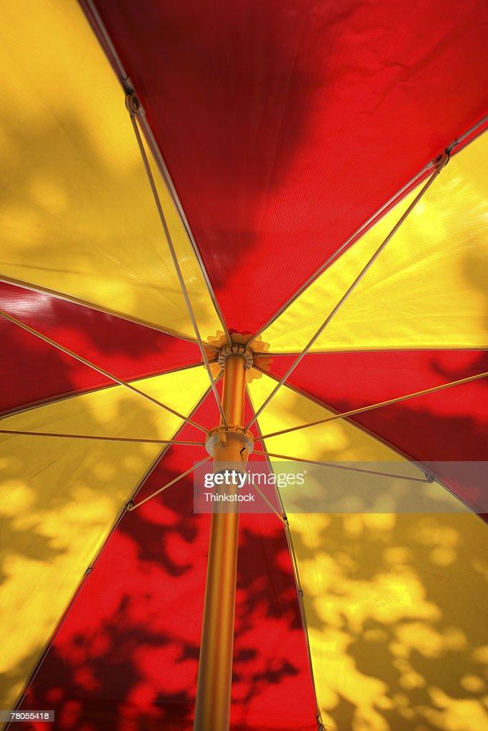 Shadows of leaves on umbrella : Stock Photo